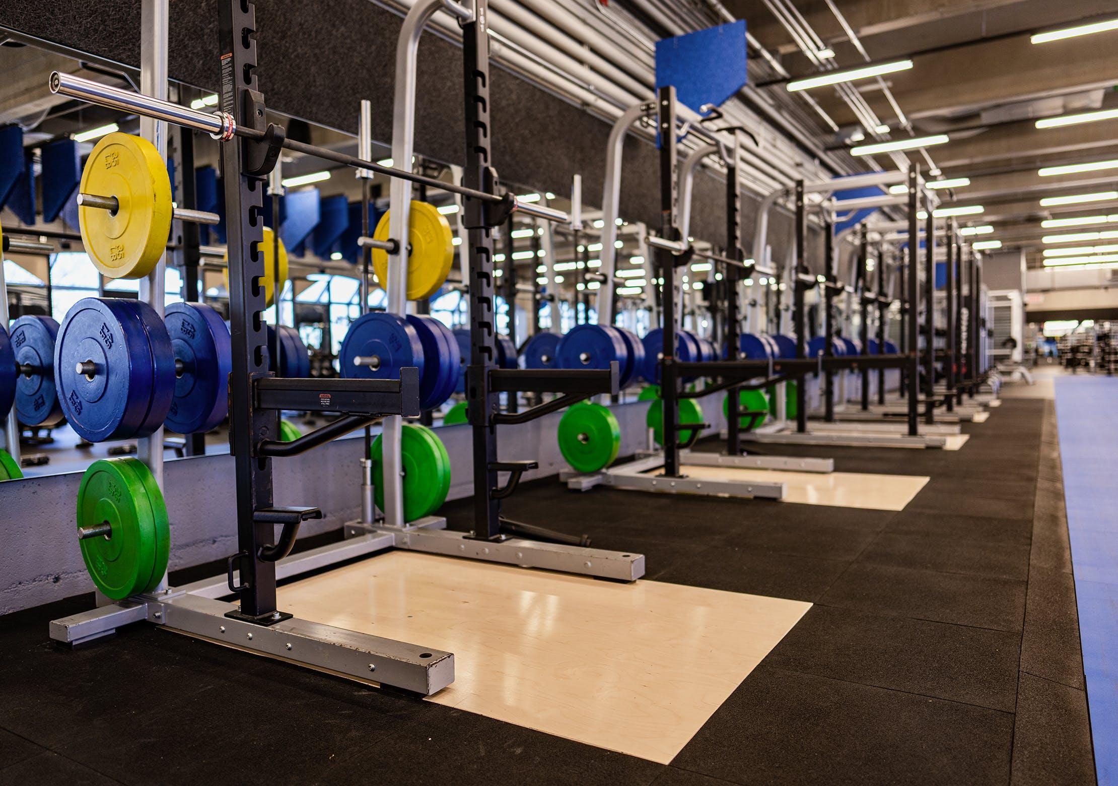 Salle d'entrainement - Zone poids et liftings | CEPSUM