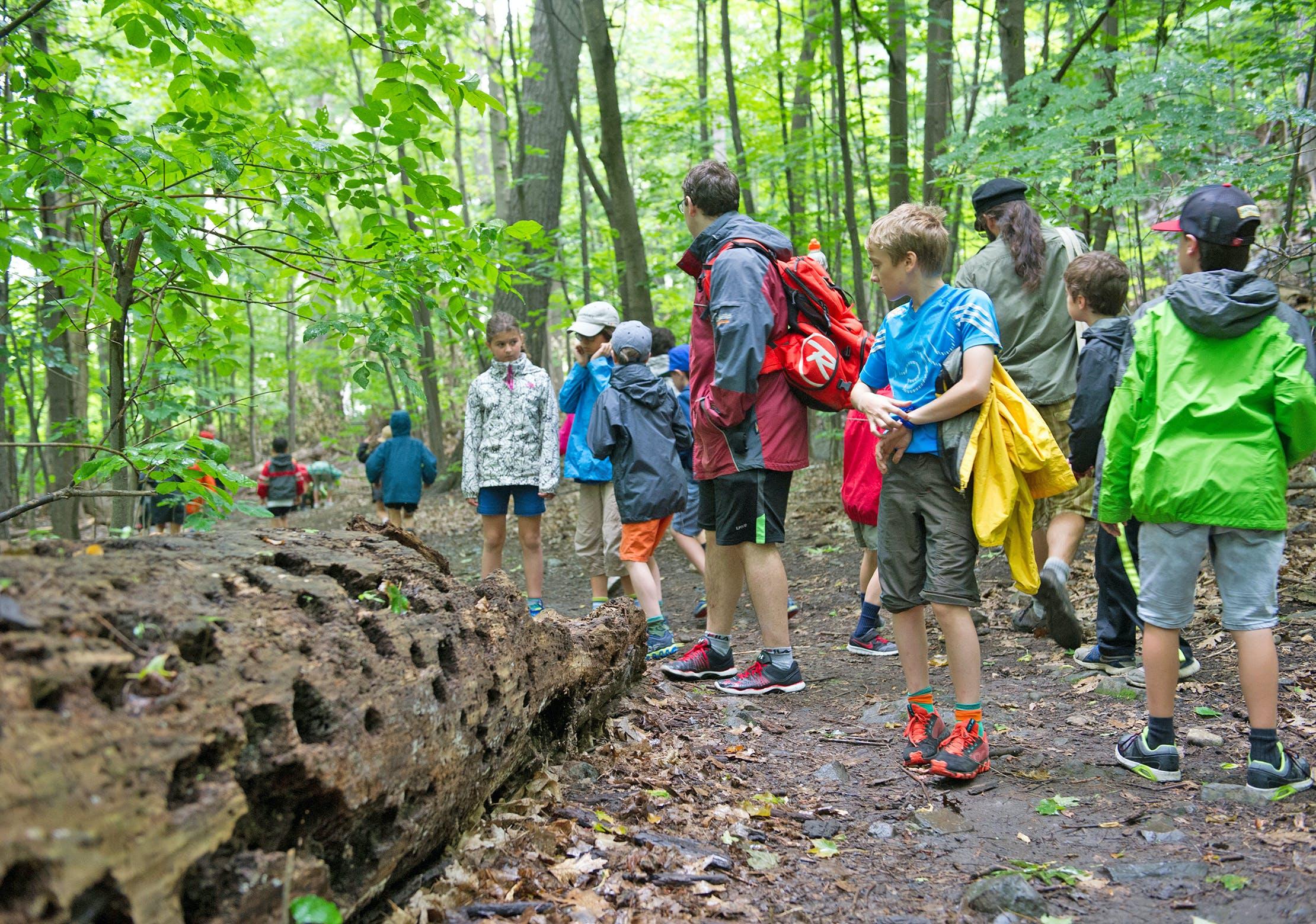 Camp biodivserité 8 et 9 ans - Camps de jour CEPSUM