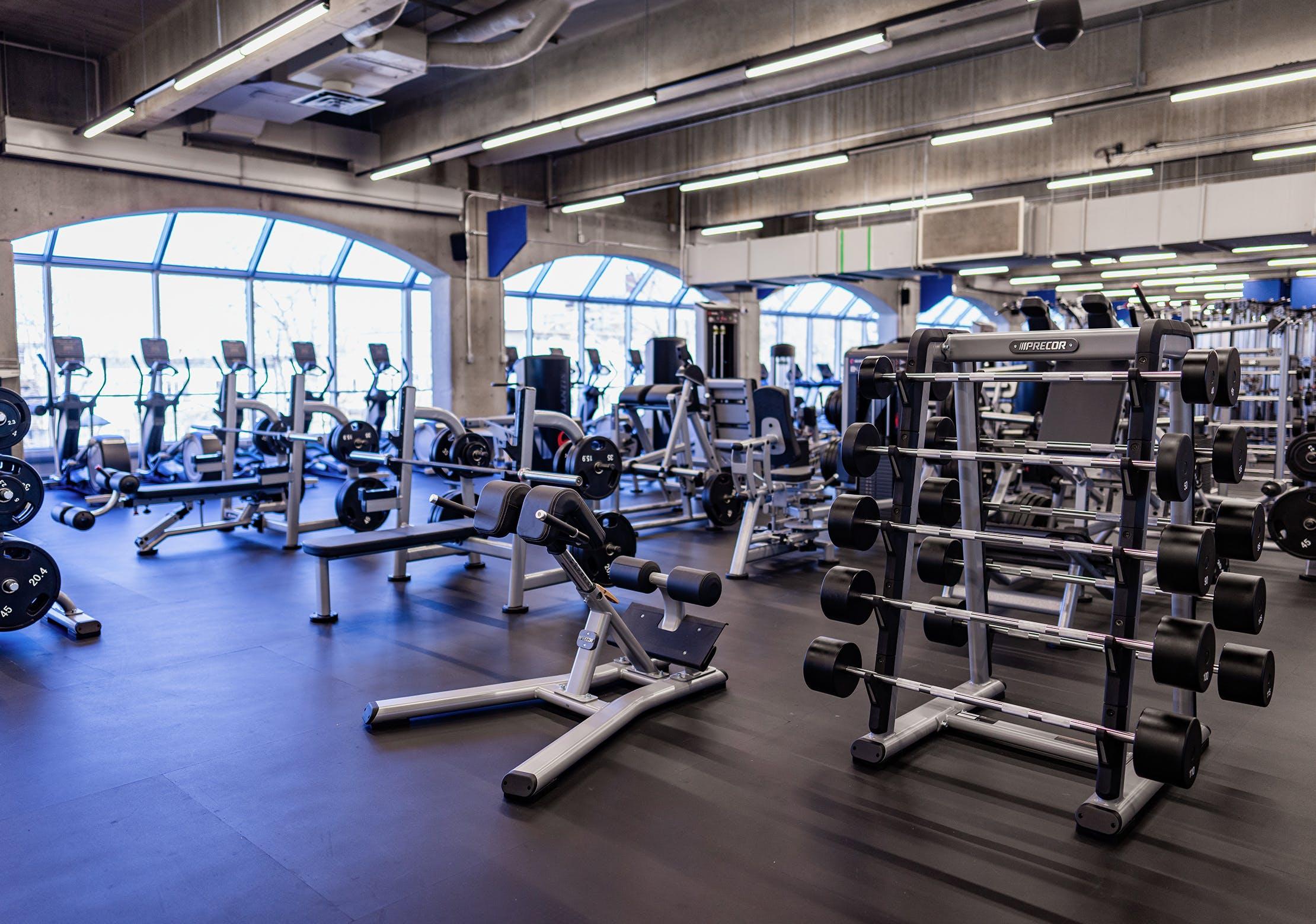 Salle d'entrainement - Zone d'appareils plate loaded | CEPSUM