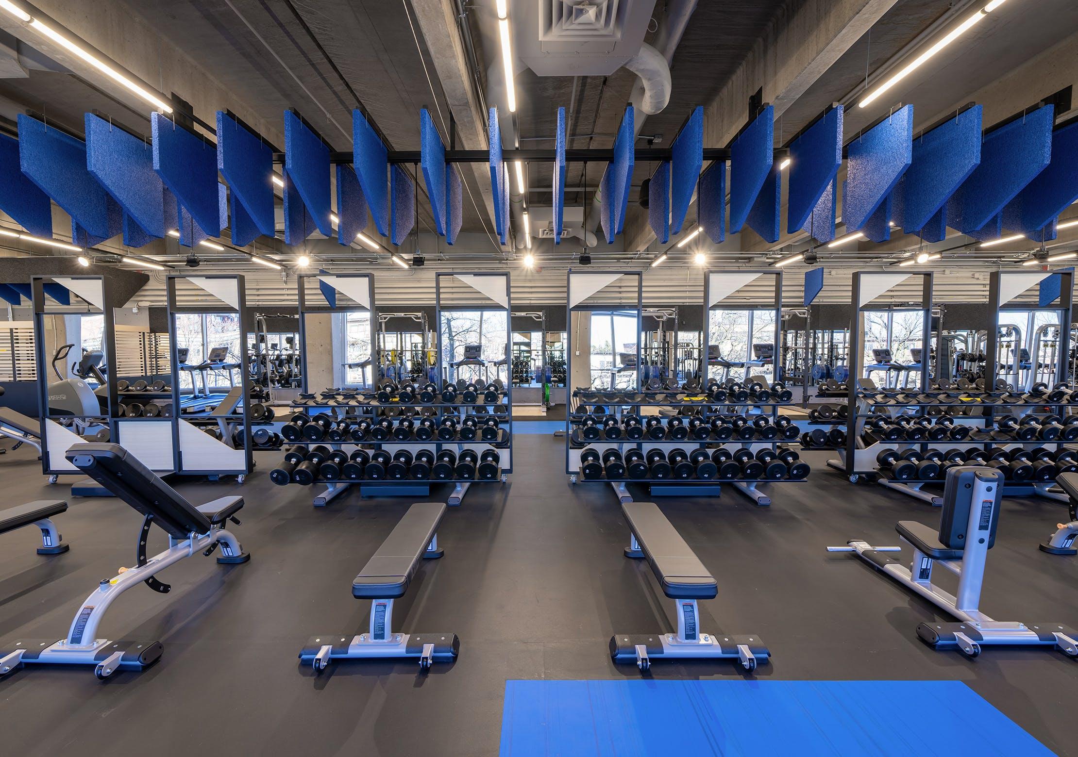 Salle d'entrainement - Zone de poids libres et de liftings | CEPSUM