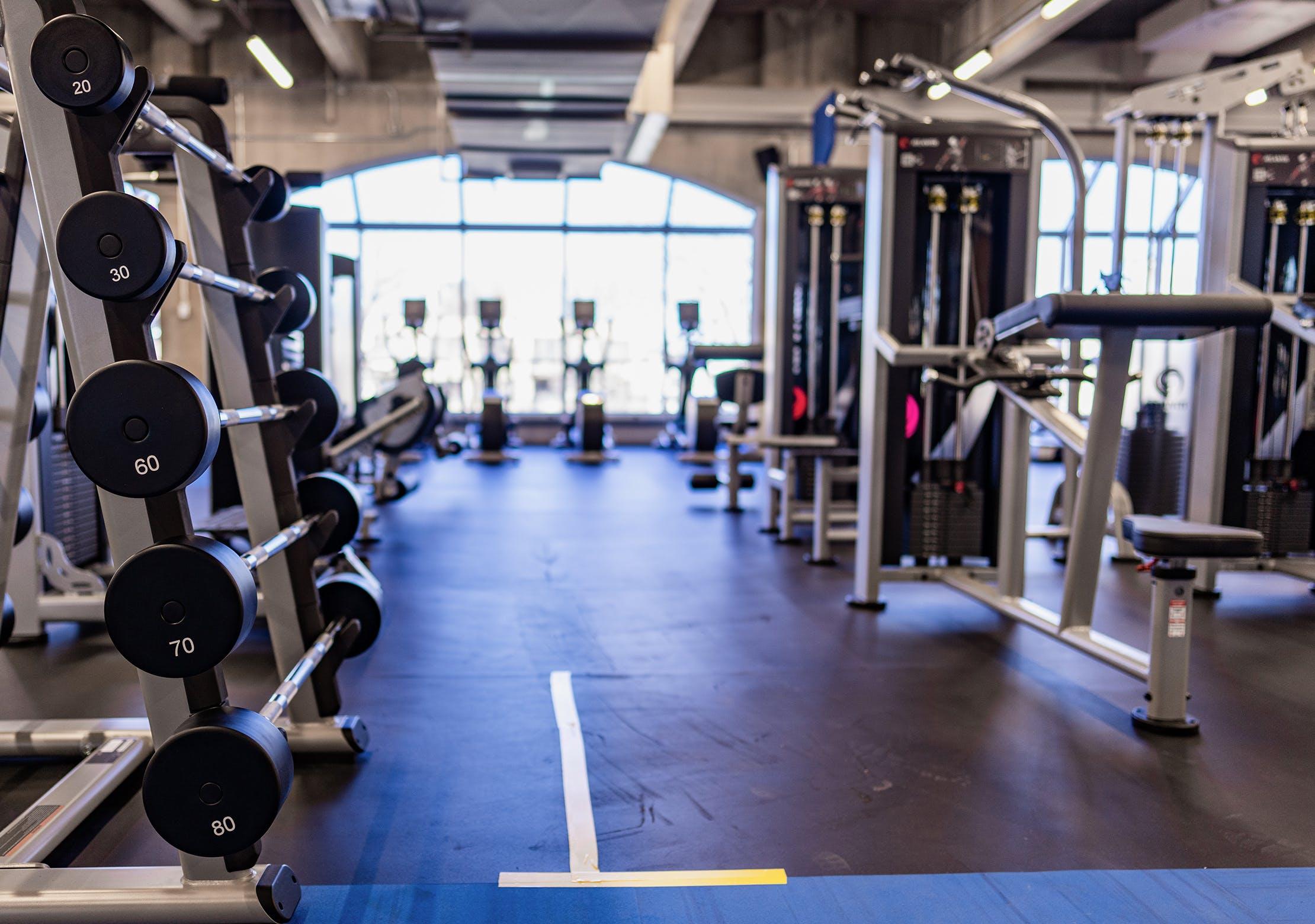 Salle d'entrainement - Plate loaded et charge sélective | CEPSUM
